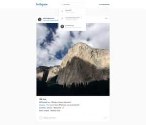 Instagram Desktop Search